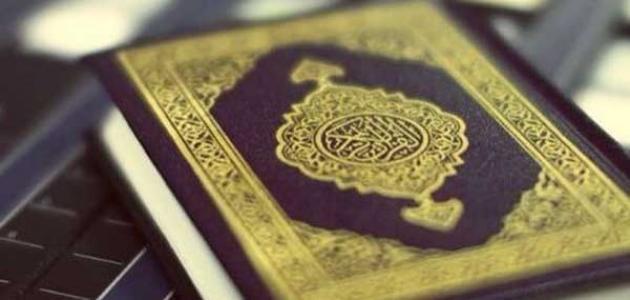 نباتات ذكرت في القرآن