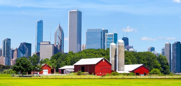 الفرق بين الريف والمدينة