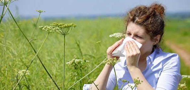 علاج الحساسية الموسمية بالأعشاب
