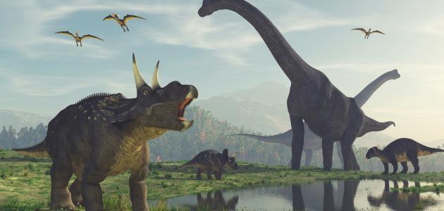 معلومات عن الديناصورات سطور