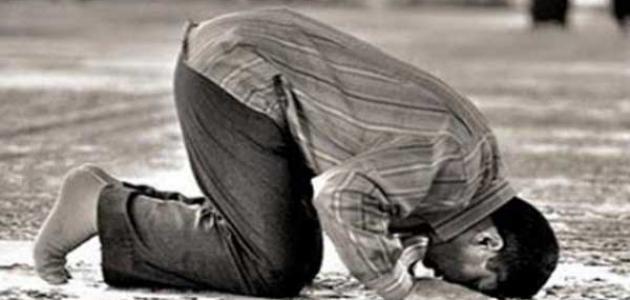 ماذا يقال في السجدة في القرآن