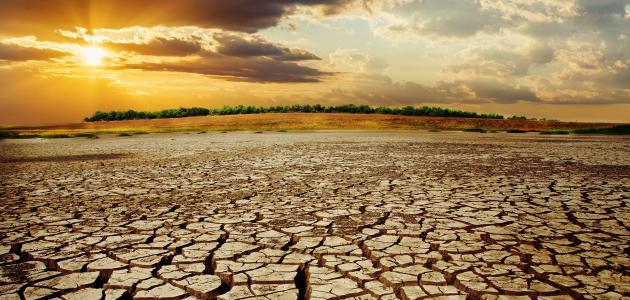 ما هي أنواع المناخ