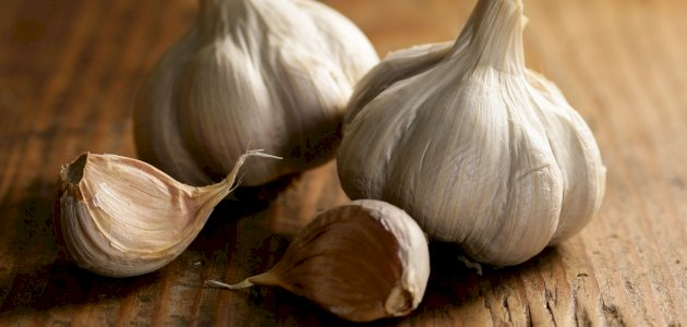 علاج الأكياس الدهنية بالثوم: حقيقة أم خرافة قد تضرك؟