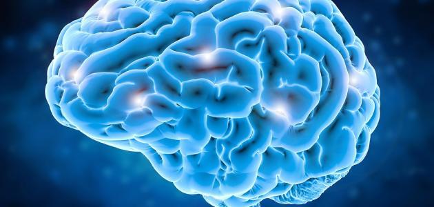 أعراض ضمور المخ البسيط