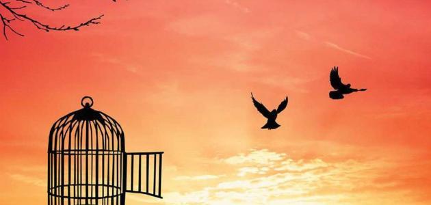 تعريف الحرية