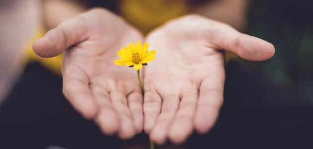 تعريف الجمعيات الخيرية