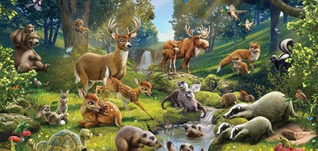 طرق تكاثر الحيوانات البرية