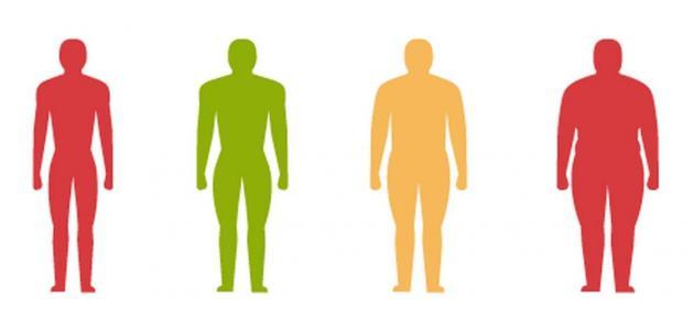 طريقة حساب كتلة الجسم
