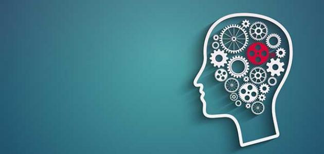 تخصص علم النفس في الجامعات