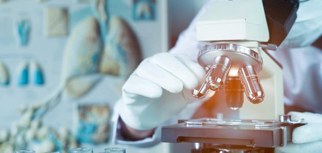 ما هو تحليل البروتين في الدم