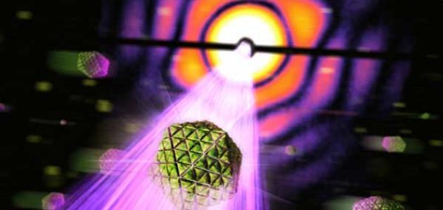 معلومات عن الفيزياء الحيوية