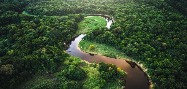 أين يوجد نهر الأمازون موقع مصادر
