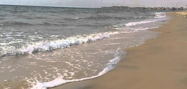 معلومات عن شاطئ نصف القمر سطور