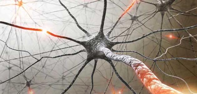 أعراض تلف الأعصاب
