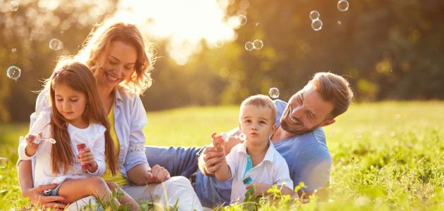 تعريف تنظيم الأسرة