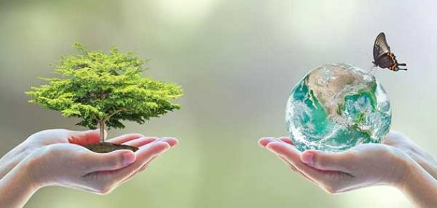 موضوع تعبير عن البيئة بالعناصر كلام نيوز