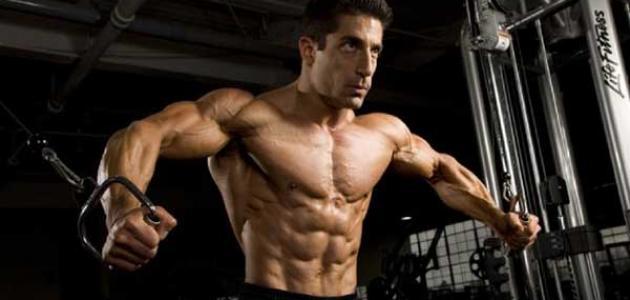 تمارين الإحماء لرياضة كمال الأجسام