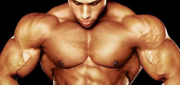 نظام غذائي لزيادة الكتلة العضلية