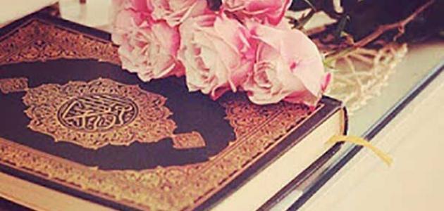 سبب نزول سورة محمد