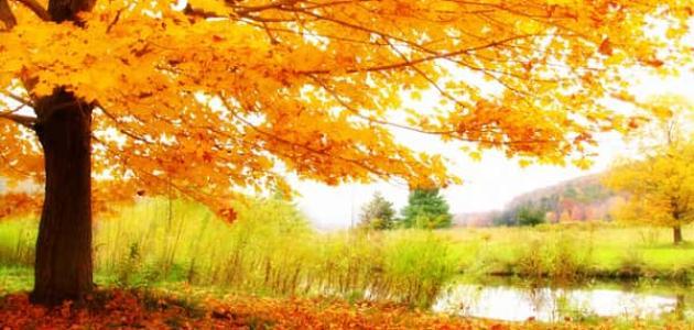 موضوع عن فصل الخريف