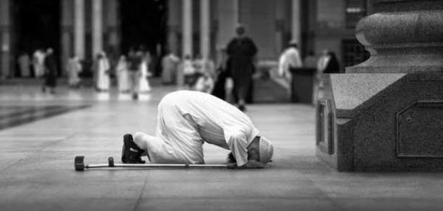 جمع الصلاة في المطر