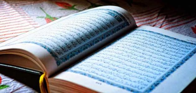 أدلة عن الإسلام دين الحق
