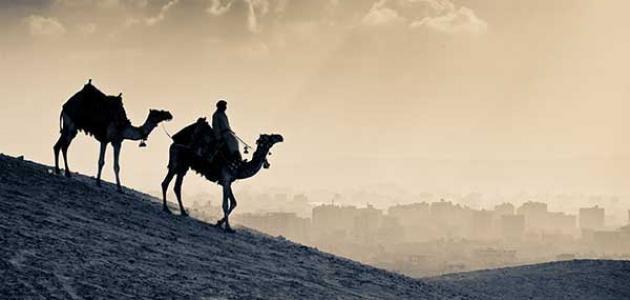 من هن زوجات عثمان بن عفان