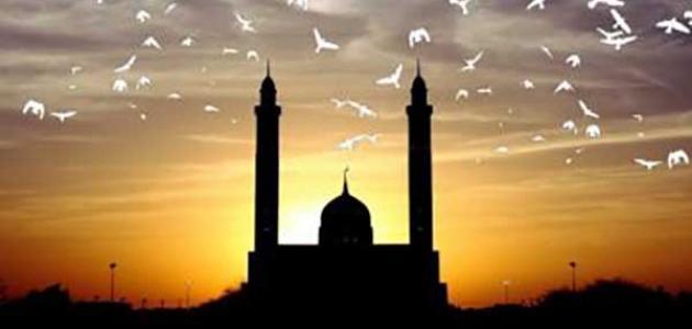 مفهوم العبيد في الإسلام