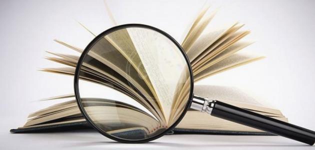 وظيفة النقد الأدبي