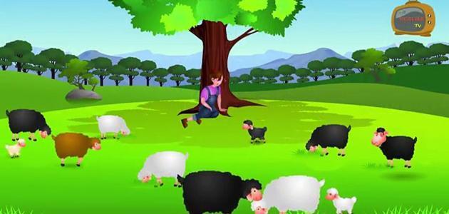 قصص أطفال مصورة عن الصبر