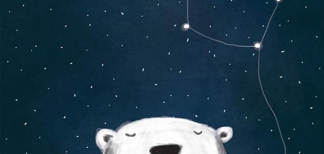 معلومات حول نجم الدب القطبي