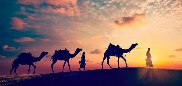 تاريخ هجرة النبي