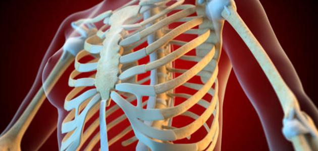 إمرأة شابة مماثل خطأ أعراض برد العظام الصدرية Comertinsaat Com