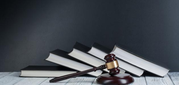 مبدأ المشروعية في القضاء الإداري