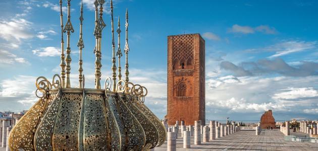 فاتح بلاد المغرب