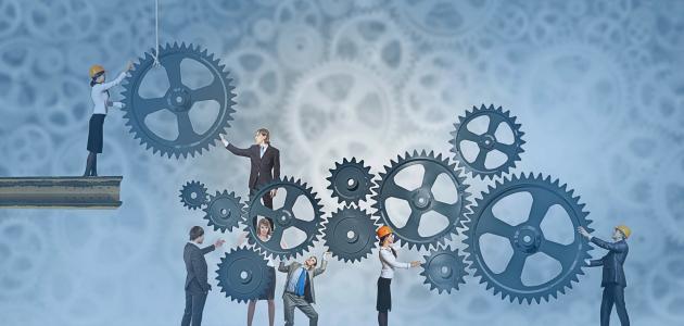 إدارة المنظمات الربحية