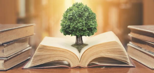 المدرسة الواقعية في الأدب العربي