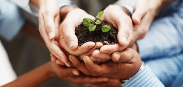 بحث عن المنظمات غير الربحية