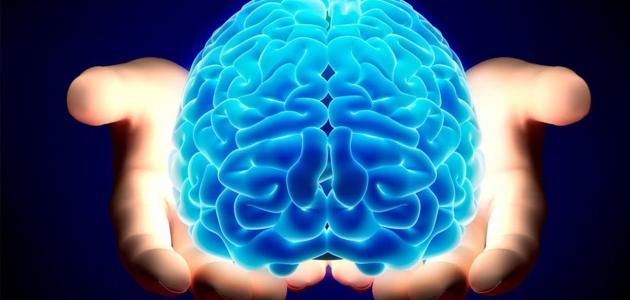 نتائج إصابة جذع الدماغ