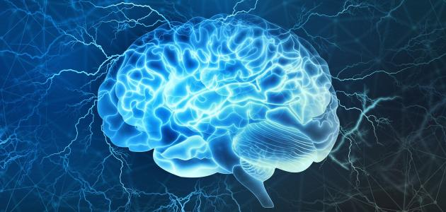 علاج موت خلايا المخ