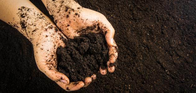 طرق تعقيم التربة