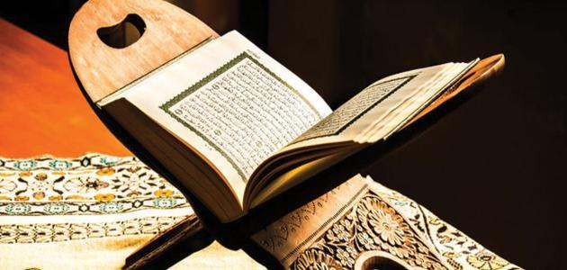 آيات النعيم في القرآن