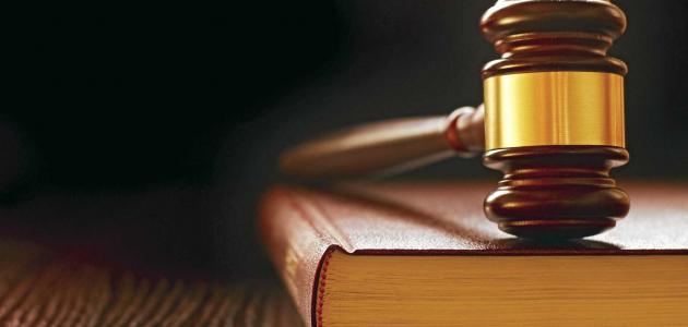 وظائف هيئة التحقيق والادعاء العام