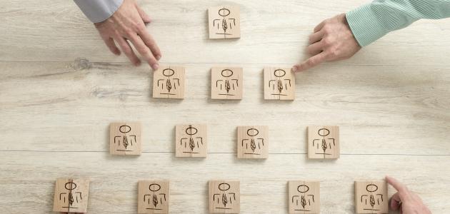 الفرق بين المنظمة والمؤسسة