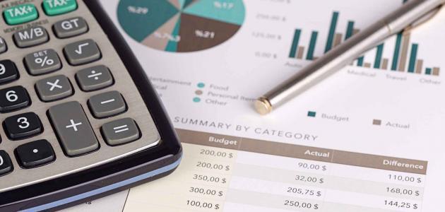 محاسبة المنظمات الربحية