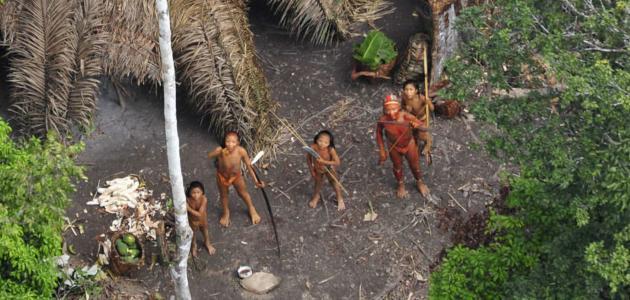 معلومات عن قبيلة الامازون