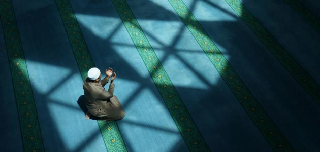 آيات قرآنية عن التسامح والعفو