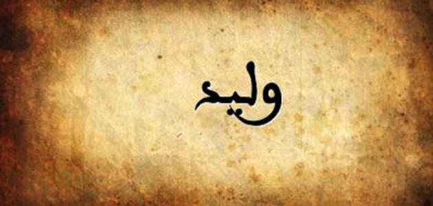 تفسير اسم وليد في المنام - سطور