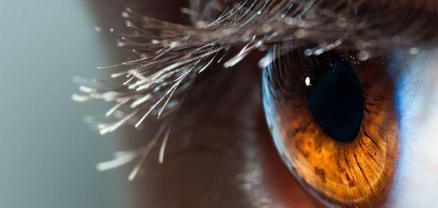 هل يؤثر الصيام على صحة العيون