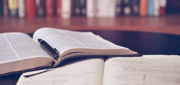 المنهج الجمالي في النقد الأدبي